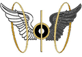 Angel wings with gold rings.png