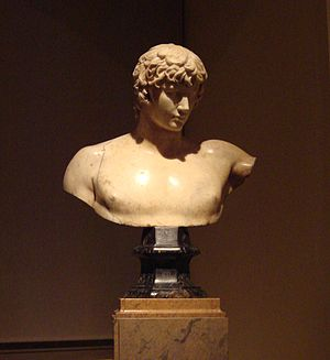 Antinous - Antinous bust of the Prado museum, Royal collection, Madrid