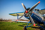 Antonov An-2 (14134748321).jpg