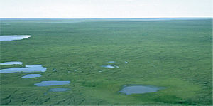 Arctic Refuge drilling controversy - A typical view of the ANWR 1002 area coastal plain.