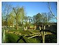 April Parc Natural Mundenhof Freiburg - Master Botany Photography 2013 - panoramio (4).jpg
