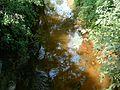 Aranyhegyi-patak Solymarnál.jpg