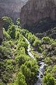 Aravaipa Canyon Wilderness (15224782059).jpg