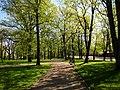 Arkadijas parks - panoramio (11).jpg