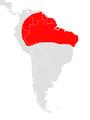 Artibeus concolor map.png