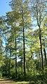 Asslarer Outback - geo.hlipp.de - 21905.jpg