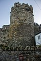 At Conwy 2020 011.jpg