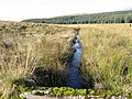 Auchtitench Lane - geograph.org.uk - 610182.jpg