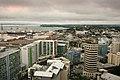 Auckland-1475.jpg