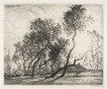 Auguste Louis Lepère - Farm with Poplar Trees of Holland - 1953.563 - Cleveland Museum of Art.tif