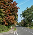 Autumn along Belvoir Road - geograph.org.uk - 1012991.jpg