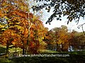 Autumn in the English Cotswolds (32077133501).jpg