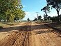 Avenida Vista Alegre - Palma - Santa Maria, foto 48 (sentido N-S).jpg - panoramio.jpg