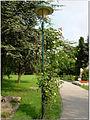 Bécs 566 (8135496923).jpg