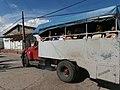 BCA truck bus 12.jpg