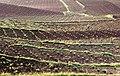 Badajoz, provincia (1984) 07.jpg
