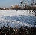 Badeweiher im Winter - panoramio (1).jpg