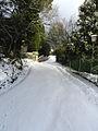 Badia Winter5.JPG
