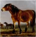 Balthasar Paul Ommeganck - A horse.PNG
