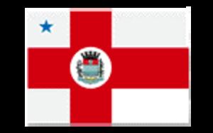 Balsa Nova - Image: Bandeira Balsa Nova PR