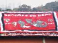 Bandeorão Dragões da Real.png