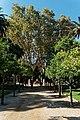 Barcelona - Parc de la Ciutadella - View NW towards Font De La Guineu Fountain.jpg