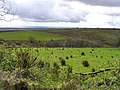 Barratitoppy Townland - geograph.org.uk - 782333.jpg
