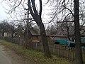 Bazar (Narodytskyi) 05.jpg
