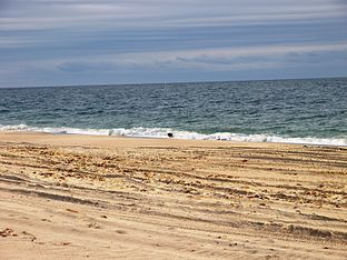 Beach in Charlestown.JPG