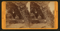 Belmont - The residence of Wm. C. Ralston, by Bradley & Rulofson 2.png