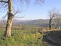 Beltany Upper - geograph.org.uk - 126116.jpg