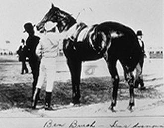 1896 Kentucky Derby - Ben Brush saddling up for the 1896 Kentucky Derby
