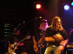 Koncert Dżemu w Katowicach - styczeń 2007