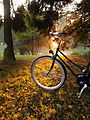 Bike on grass, autumn01.jpg