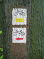 Bikeway sign on tree Poland.jpg
