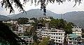 BirG048-Dharamsala.jpg