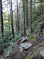 Blackwater Falls State Park WV 04.jpg