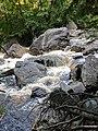 Blackwater Falls State Park WV 05.jpg