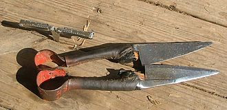 Sheep shearing - Blade shears