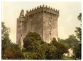 Blarney Castle. County Cork, Ireland-LCCN2002717383.tif
