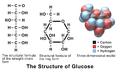 Blausen 0434 Glucose.png