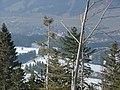 Blick vom Alpkönig auf Weitnau - panoramio.jpg