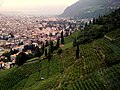 Bolzano dalla funivia - panoramio.jpg