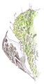 Boomkruiper Certhia brachydactyla Jos Zwarts 2.tif