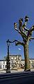 Bordeaux lamp post place amédée larrieu.jpg