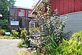 Bothell, WA - Country Village 22 - Boatworks Building.jpg