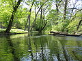 Brandywine Creek side canal, May 2007.jpg