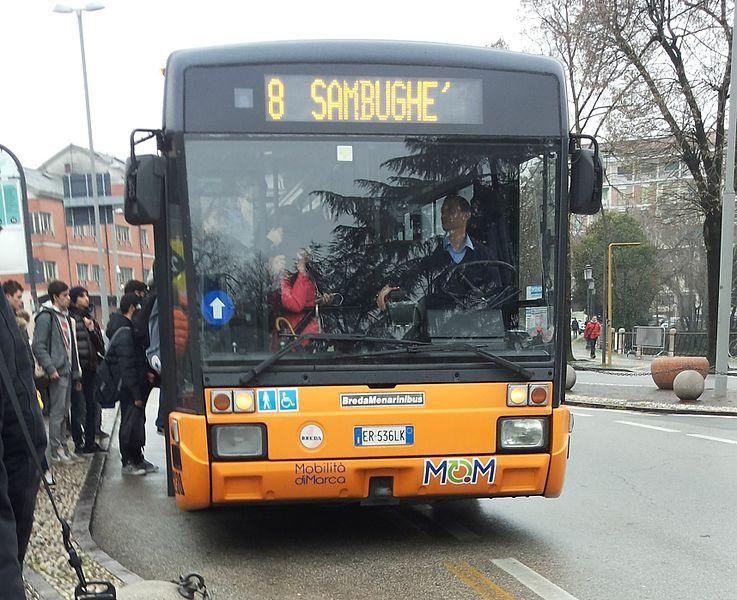 File Bredamenarinibus M221 Mobilit Di Marca