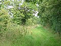 Bridleway near Springs Farm - geograph.org.uk - 502862.jpg