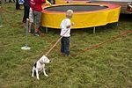 Bristol Balloon Fiesta 2011 (6042224319).jpg